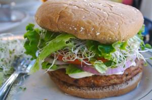 Hamburger végétarien bio